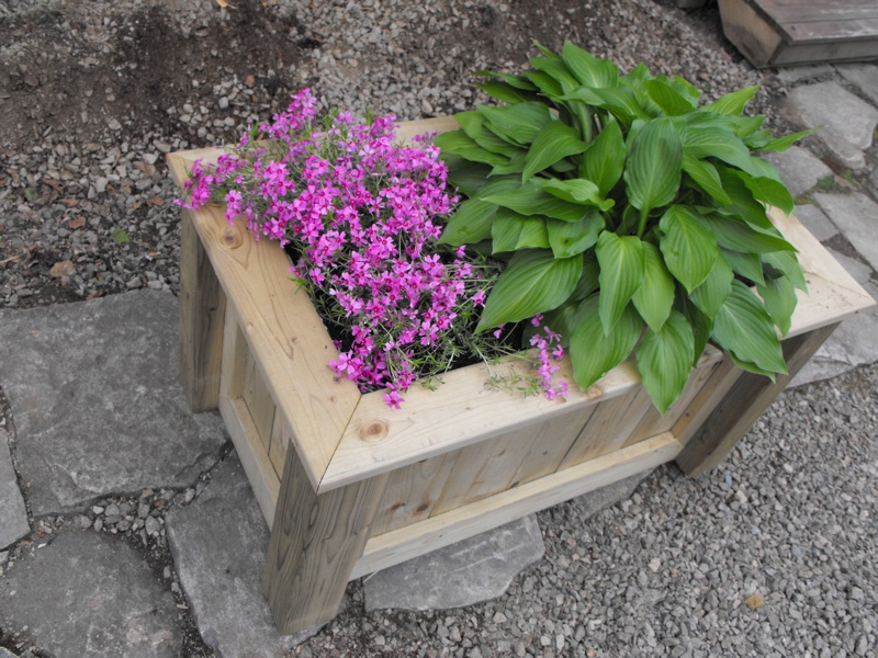 Custom designed planter box.