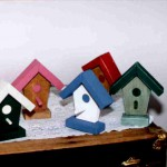 Bird house crazy