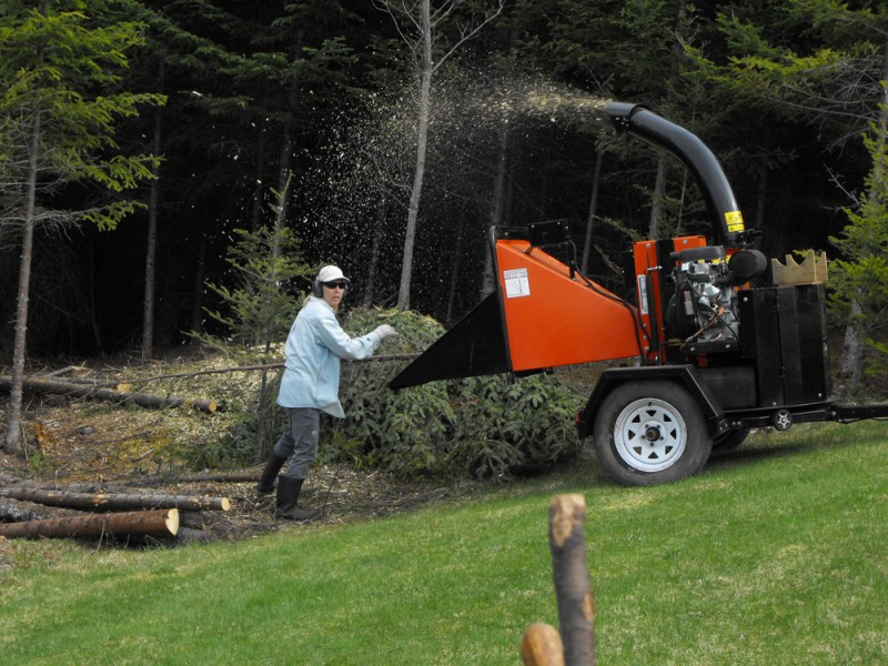 forestry,landscaping,wood chipping trees