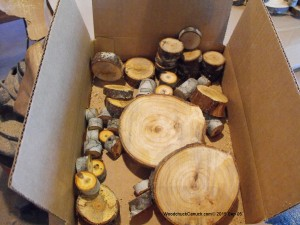 short cuts of Nova Scotia Chokecherry and balsam fir,wood crafts