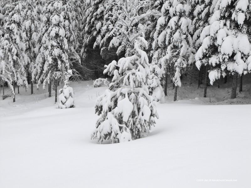 snowstorm, Nova Scotia, Loch Katrine