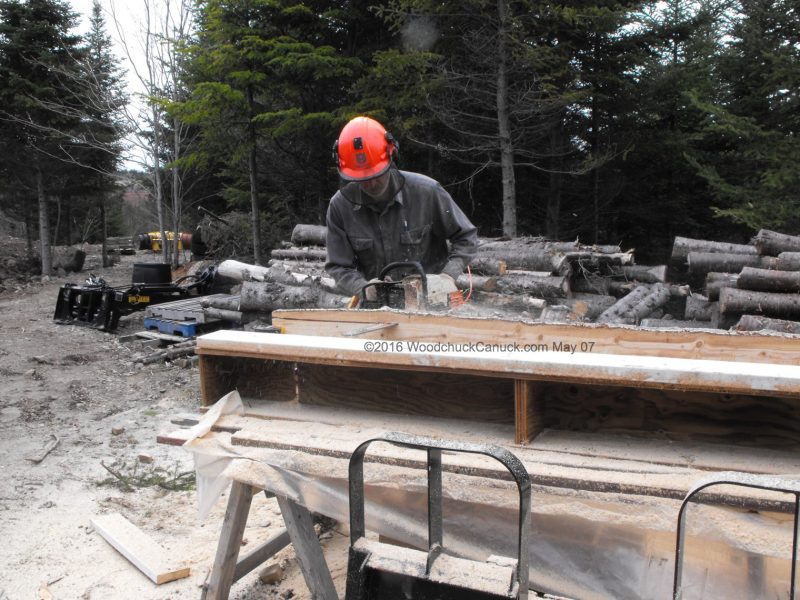 logging,lumber,chainsaw milling