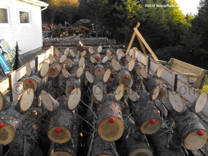 Reindeer U-Pick – WoodchuckCanuck.com