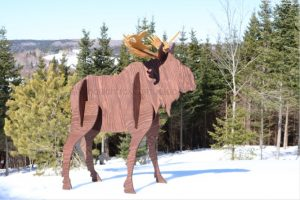3D moose, plywood projects,woodworking plans,DIY