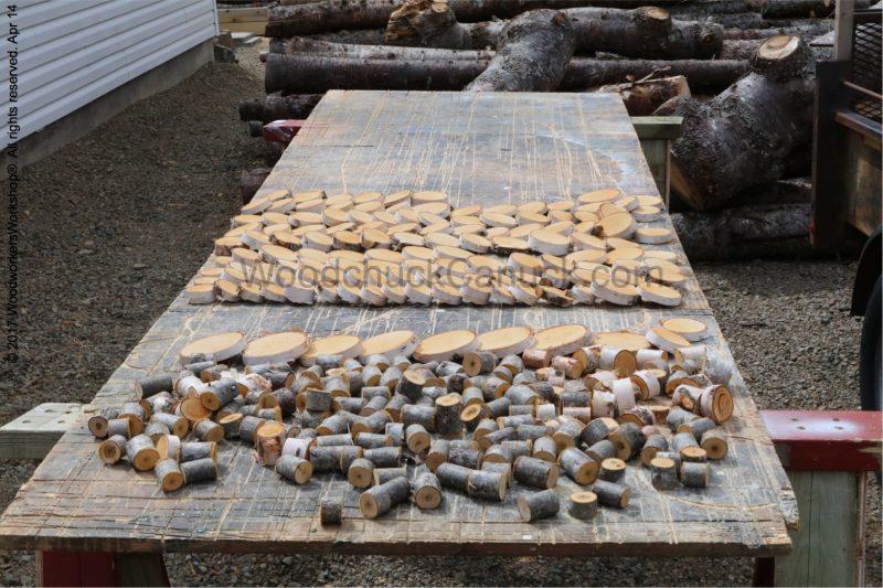 wood crafts, birch wood slices, diy