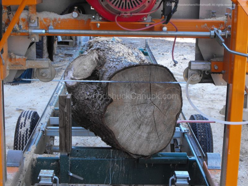 sugar maple trees,sawmill business,sawmills,saw milling,salvaged woods,timber,logging,slab,woodporn,#woodworking,urban logging,urban wood,portable sawmill,hardwood,forestry,urban forestry,trees,urban lumber,slab woodworks,live edge,barn wood,woodworker,kiln,husqvarna,stihl