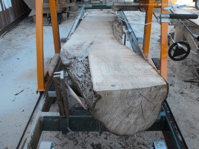 sawmill business,sawmills,saw milling,salvaged woods,timber,logging,slab,woodporn,#woodworking,urban logging,urban wood,portable sawmill,hardwood,forestry,urban forestry,trees,urban lumber,slab woodworks,live edge,barn wood,woodworker,kiln,husqvarna,stihl