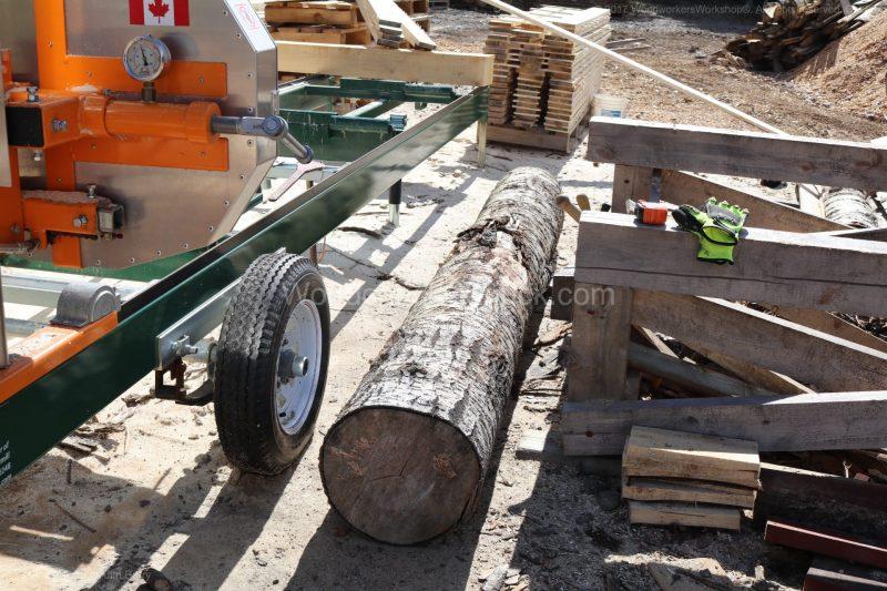 logs,sawmills