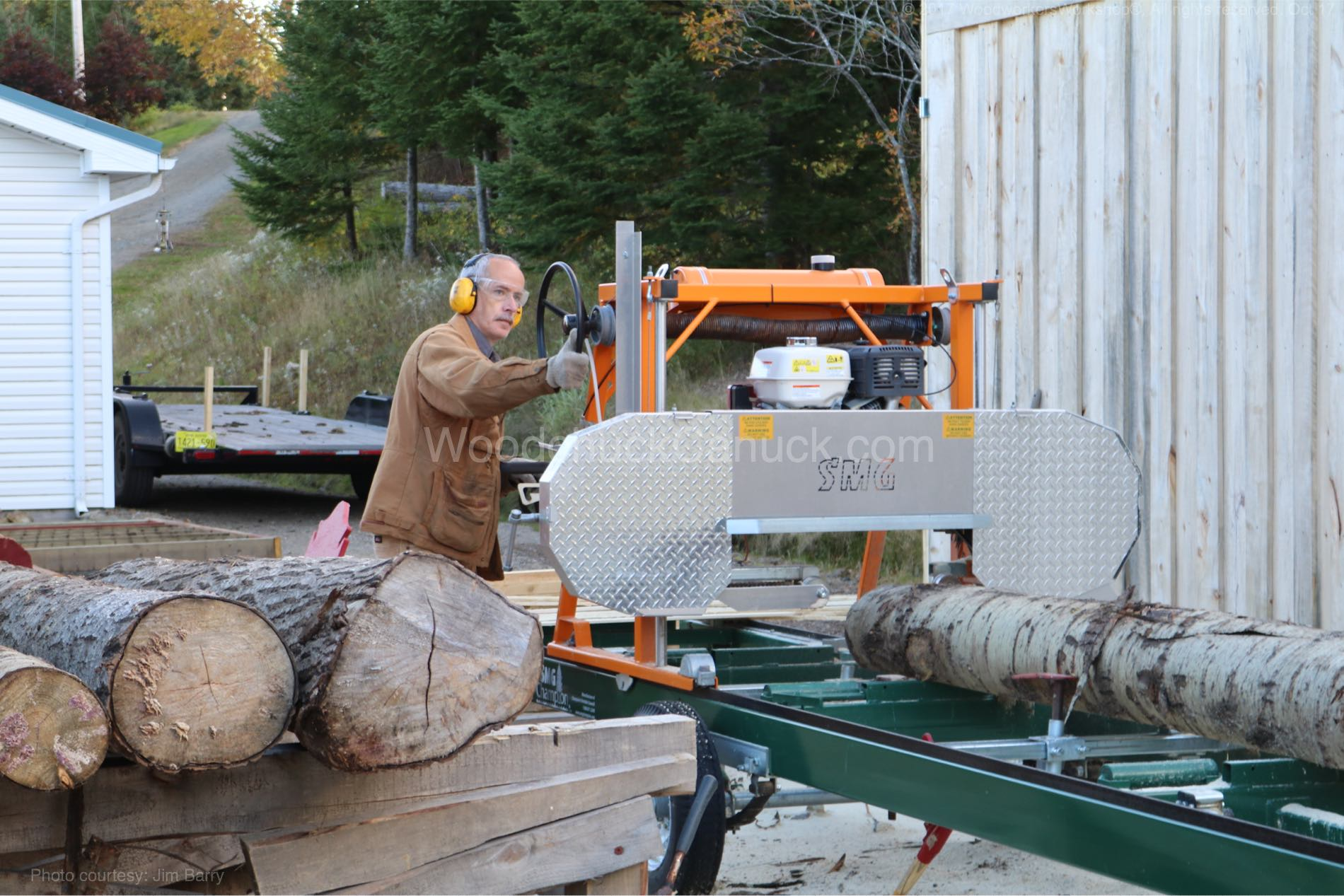 saw milling poplar