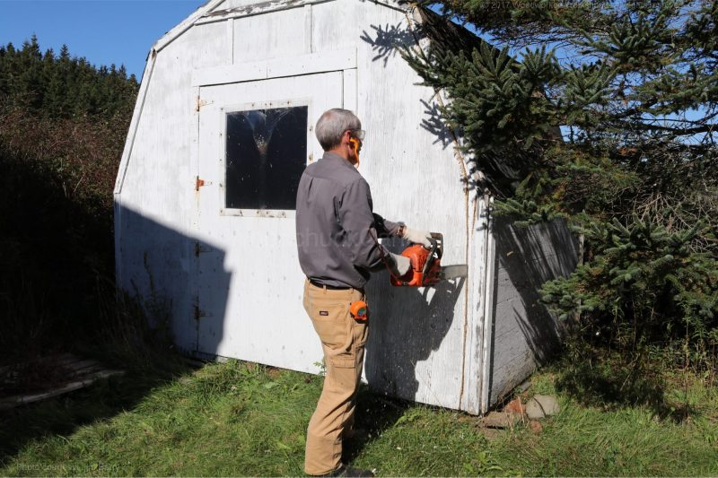 baby barn removal,chainsaw