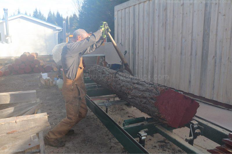 sawmill,pine logs