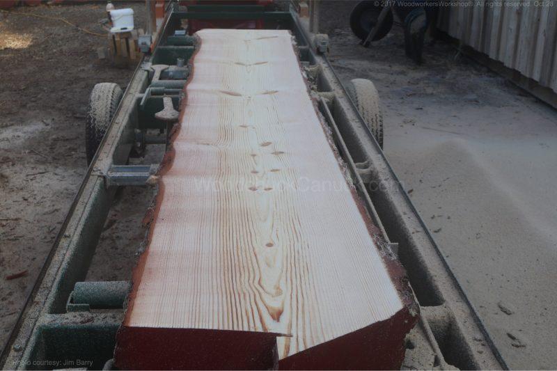 pine logs,