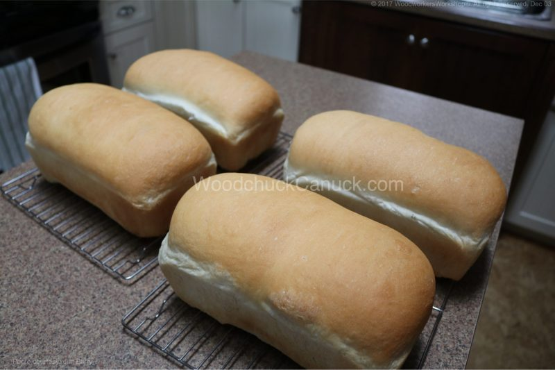 no sugar or salt in bread dough,home baking,recipes,bread rising
