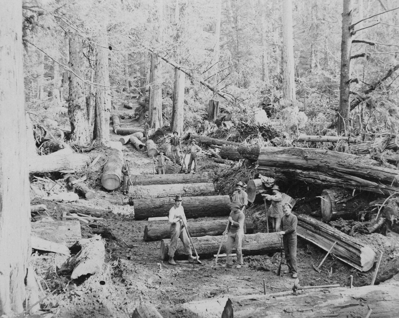 1890s Logging crew road builders