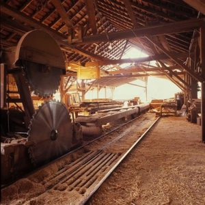 Old scrag head rig circle saw mill.