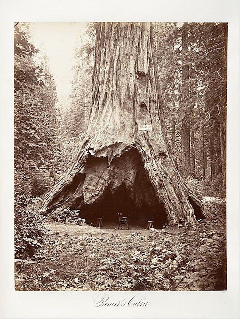 1867 Stump house.