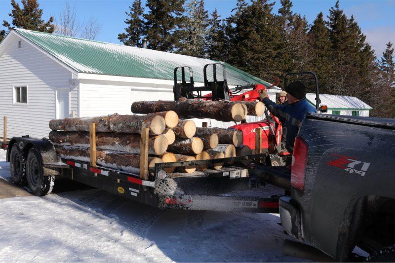 spruce logs,
