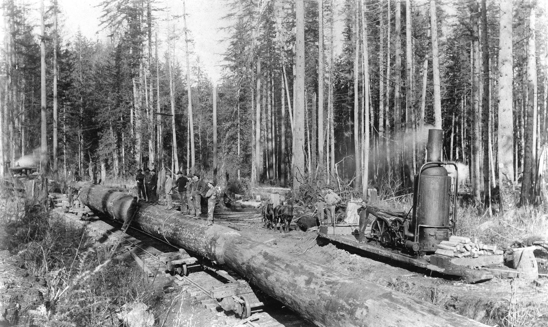 1898-Royal City Planing Mills, Mud Bay logging camp