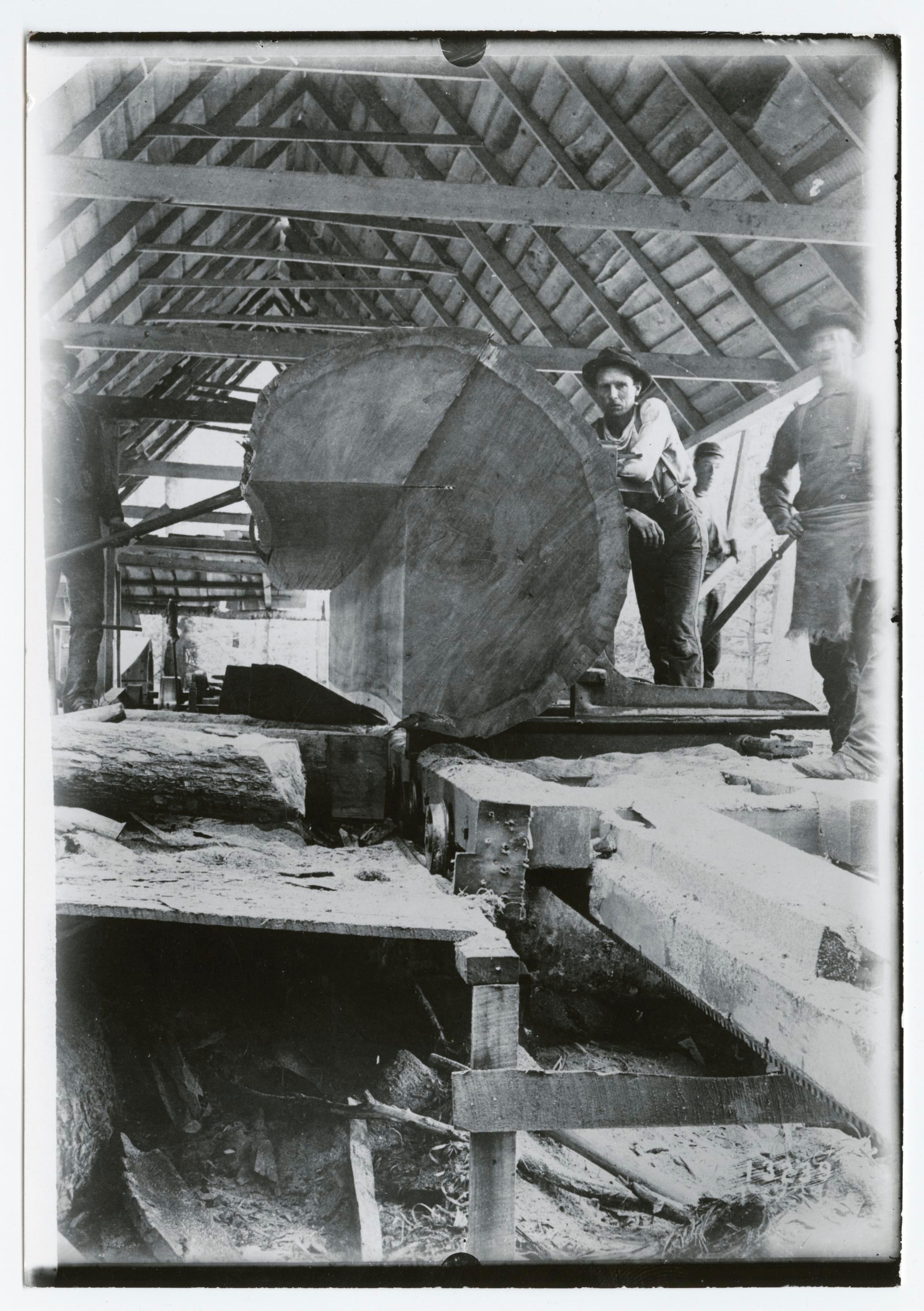1900 2 men quarter sawing a large log