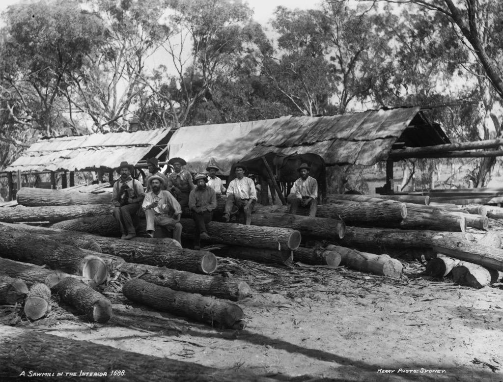 1900 A sawmill in the interior of Australia.