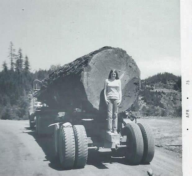 Big log on truck