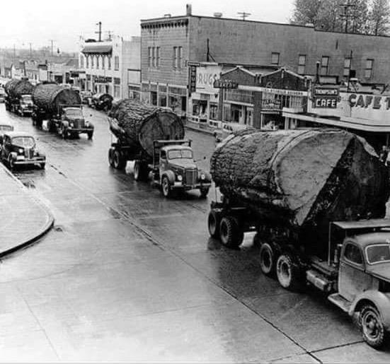 Trucking big logs through town