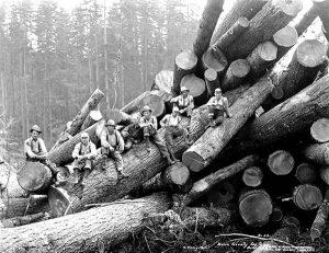 Woodsmen pose on the log pile