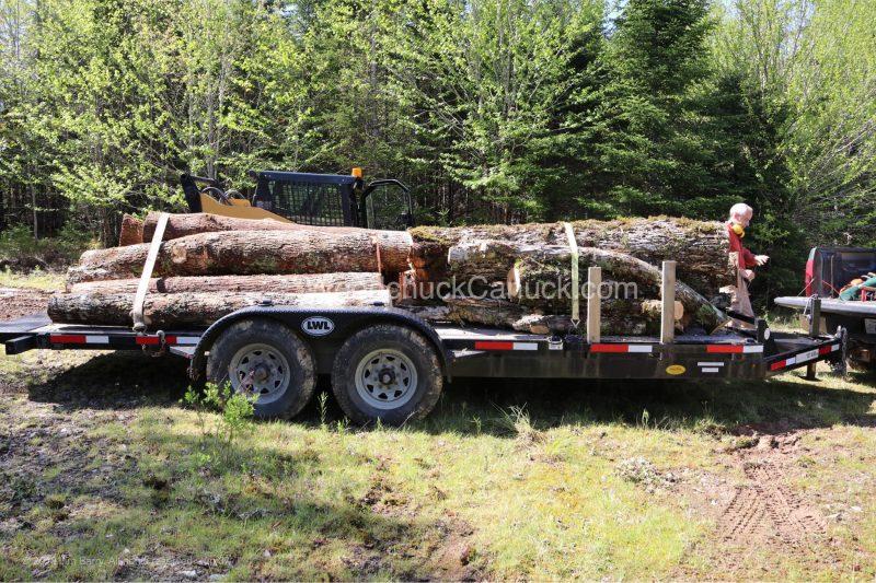 chainsaw,ash wood,skidsteer,firewood