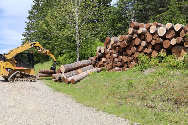 hemlock lumber,rough lumber,stud wood,saw milling, Antigonish county,Nova Scotia
