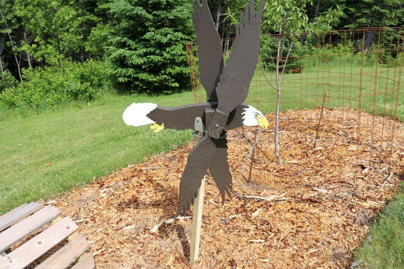 eagle,whirligig