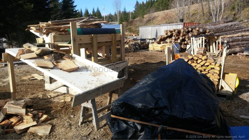 firewood for sale, kindling for sale, Antigonish County, Nova Scotia, Guysborough County