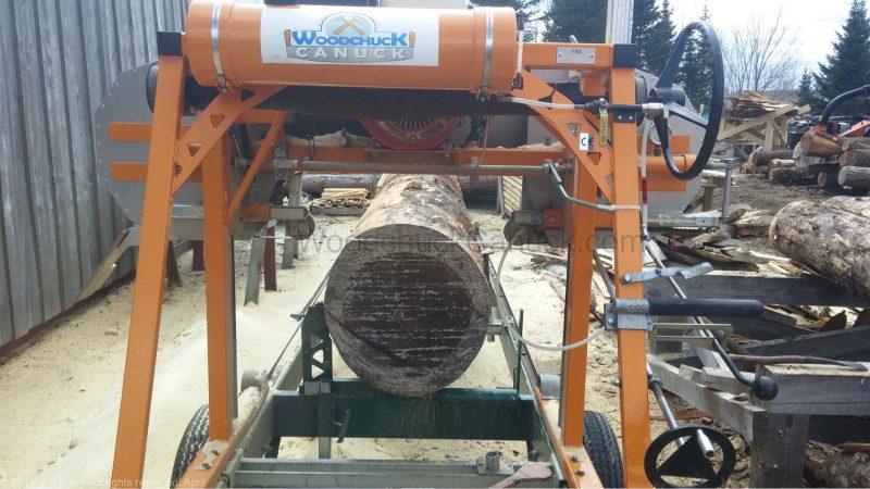 big pine logs, sawmilling live edge lumber, Nova Scotia, Antigonish County, Guysborough County