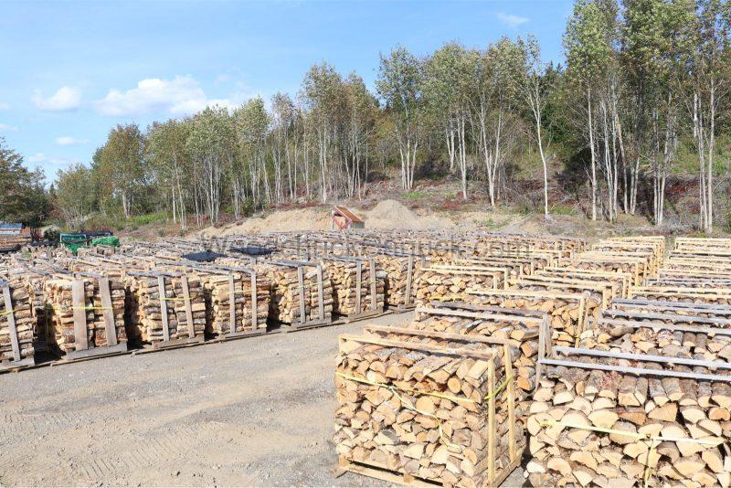 Yard full of palletized firewood.