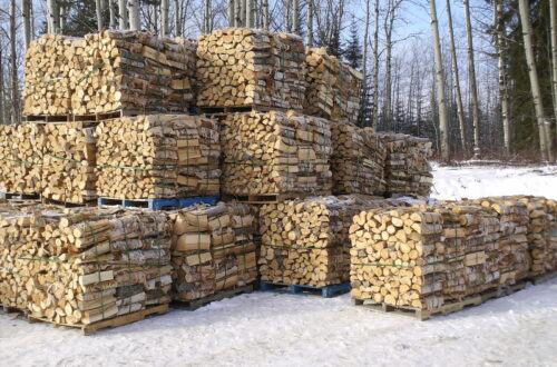 Firewood stacked and strapped.