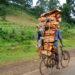 Firewood around the world.