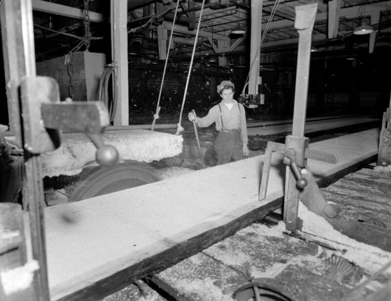 circle saw mill, creative commons, lumber jill, lumber mill, machinery, WTC, Women's Timber Corp.