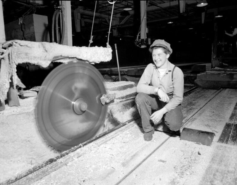 circle saw mill, creative commons, lumber company, lumber jill, machinery, WTC, Women's Timber Corp.