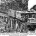 15 ton Upright Climax Geared Locomotive.