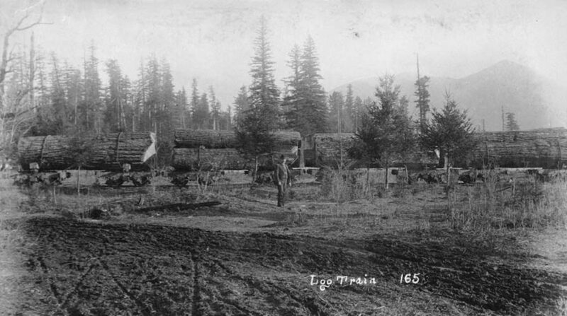 1892 Railroad flatcars carrying logs.
