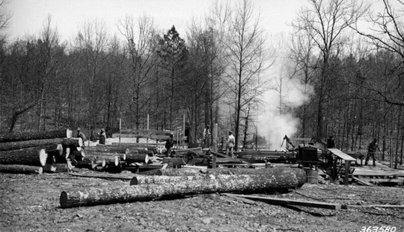 1938 Griffin Stave C. near Bradley CCC camp, Missouri.