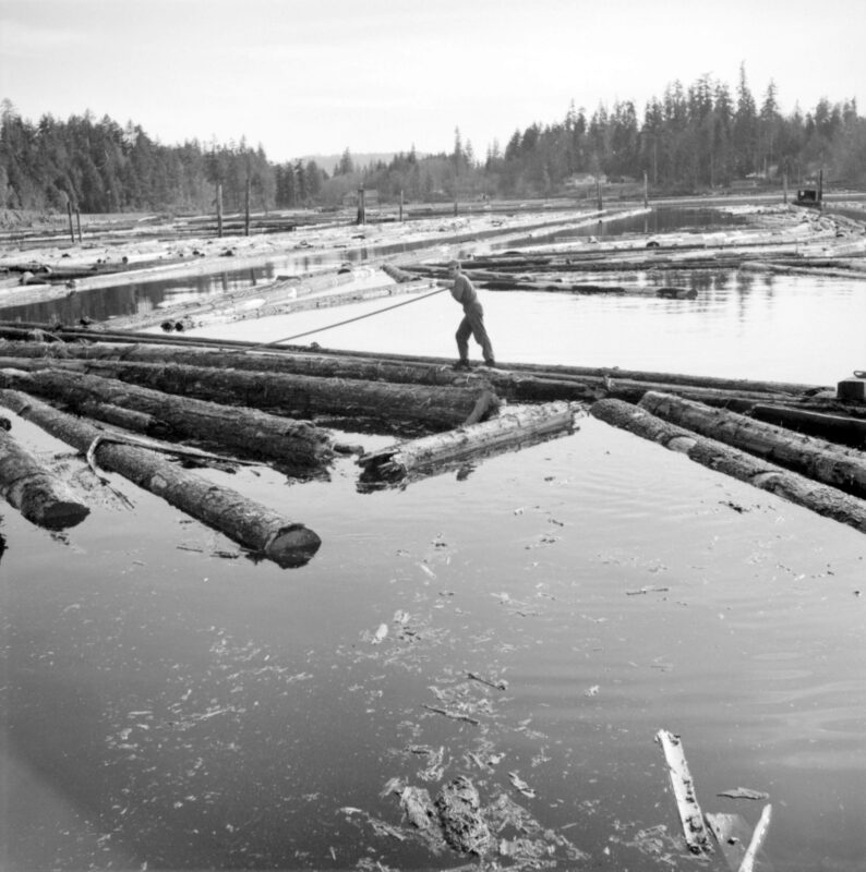 1940s Log driver pushing logs around in the water.
