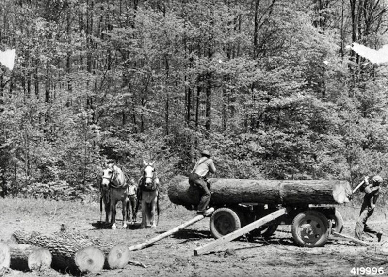 1942 with cart and horses.