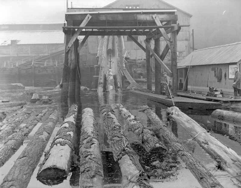 1944 Log driver feeding the jack ladder from the sorting boom at Pacific Mills.
