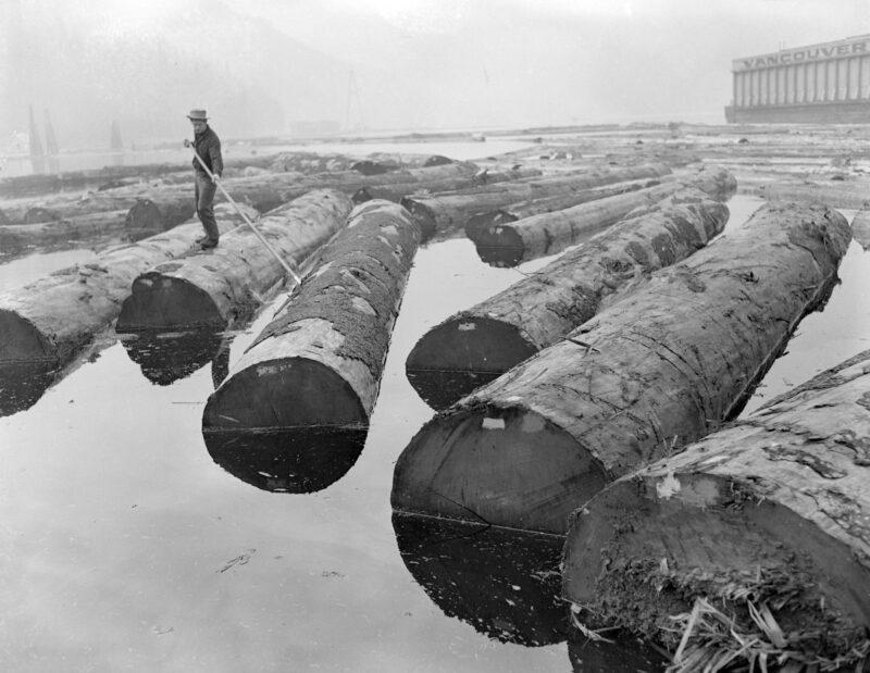 1944 Log driver sorting logs at Pacific Mills.