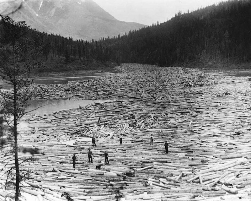 Log drivers on the river.