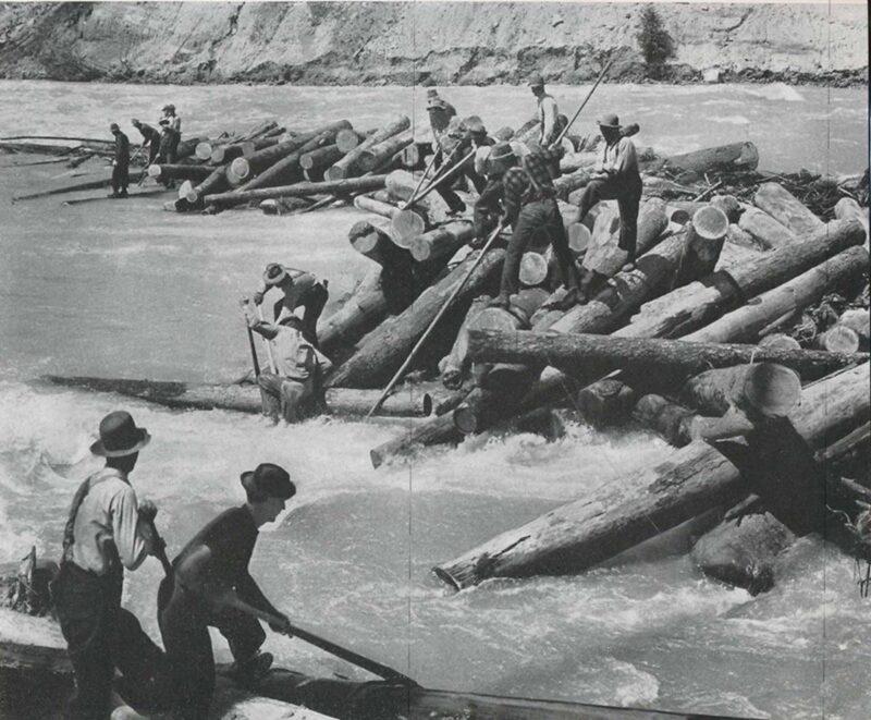 Log drivers pegging river logs.