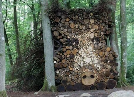 Friday's Firewood from Around the World