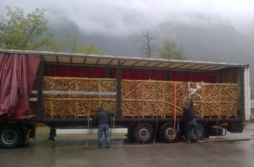 Firewood from around the world.