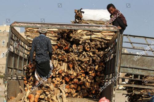 Firewood market in Sana'a, Yemen - 18 Sep 2019