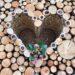 Wood love … Happy Valentine's Day.